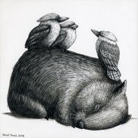 A Very Tired Wombat and Three Kookaburras