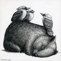A Very Tired Wombat and Three Kookaburras